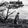 Bintangs - It is A Nightmare - CD -