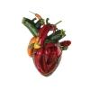Carcass - Torn Arteries - CD -