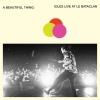 Idles - A Beatutiful Thing Live At The Bataclan - 2cd -