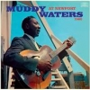 Muddy Waters - At Newport 1960 - LP -