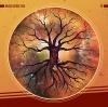 Nazca Space Fox - Pi - CD -