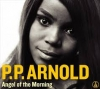 P.P. Arnold - Angel Of The Morning - 2CD -