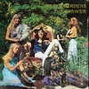 Peter Bardens - The Answer - LP -
