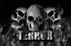Terror Banner Melting Skulls €19,95