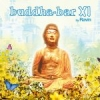 Various Artists - Buddha-Bar XI - 2cd -