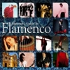 Various - Beginner's Guide To Flamenco - 3CD -